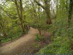 Our next walk – Yarrow Valley, Chorley, 20 July